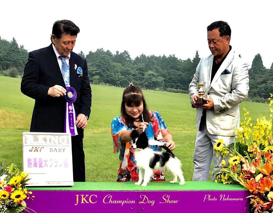 Queen Bless JJ - Best Baby Puppy in Show